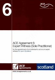 Expert witness (sole practitioner) (For use in Scotland)