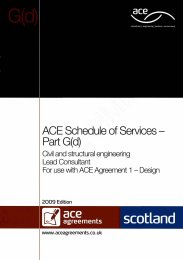 Schedule of services - Part G(d): Civil and structural engineering - Lead consultant