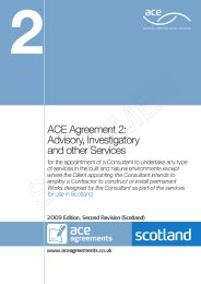 Advisory, investigatory and other services (For use in Scotland) (2009 edition, second revision (Scotland))
